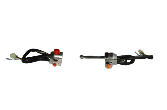 Motorcycle Body Parts (Handle switch)