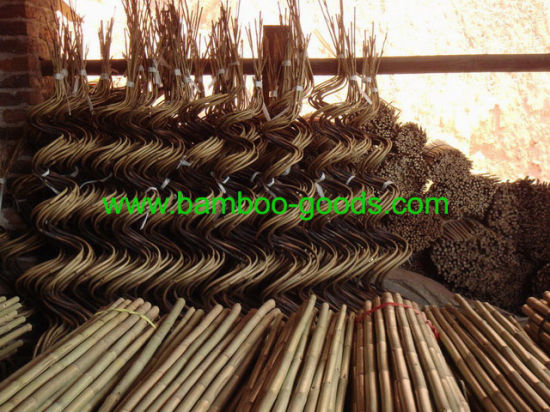 Curved Bamboo pictures & photos