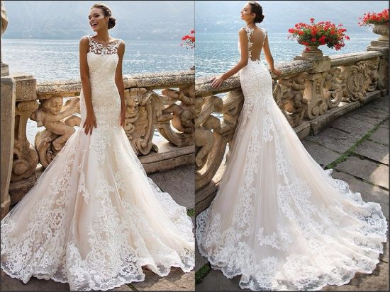 8bba5b37fa02 Pink Bridal Gowns Appliqued Lace Tulle Mermaid Wedding Dresses Rr3006  pictures & photos