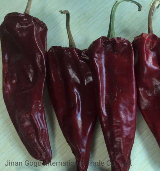 New Crop High Quality Red Chilli Yidu Chilli for Exporting pictures & photos