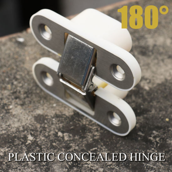 Industrial Machinery Plastic Door Cabinet Hinge