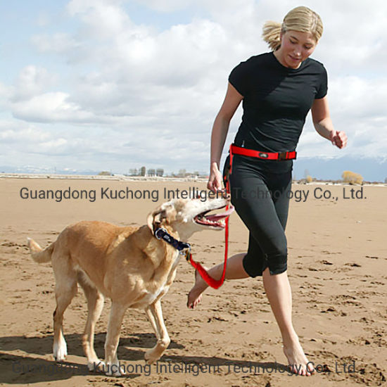 Patented Hands Free Running Belt Leash Tough Nylon Anti-Shock Dog Leash