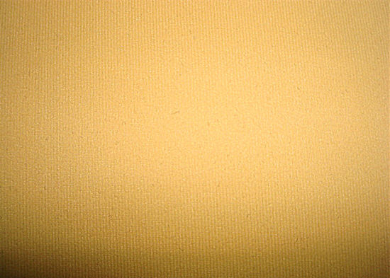 Polyester Tricot Jersey Fabric for Garment Use pictures & photos