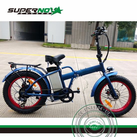 Folding Electric Bicycle with 350W Brushless Motor pictures & photos
