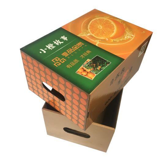 Corrugated Fruit Citrus/Orange Packaging Box