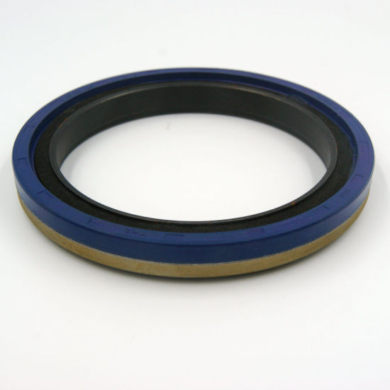 Made in China OEM Size NBR Rubber Oil Seal for Pumps of Motors