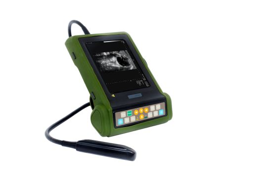 Mslvu19 for Bovine, Sheep, Equine Portable Handheld Vet Ultrasound Machine, Veterinary Ultrasound Scanner (MSLVU19) pictures & photos