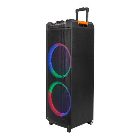 Double 12 Inch Best Sound Subwoofers Wooden Enclosures Speaker