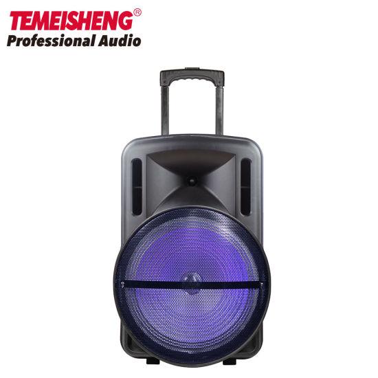 15 Inch Audio LED Light Trolley Bluetooth Loud Speaker Box