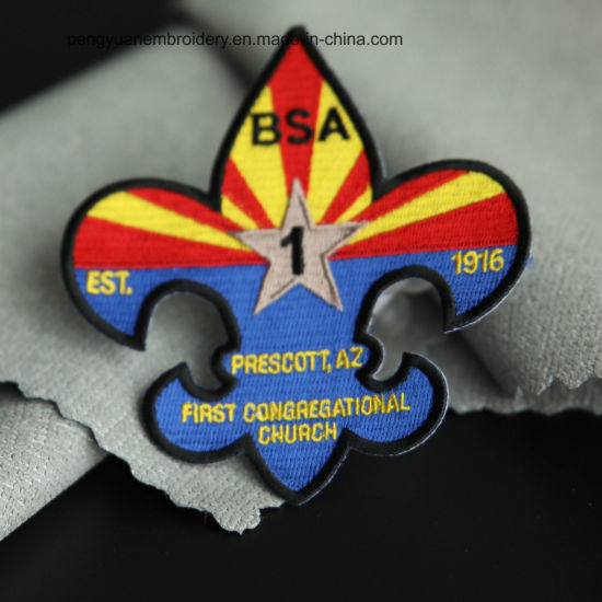 Top Quality Professional Embroidery Patch for Clothing/Cap/Shoe/Other