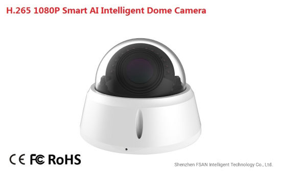 Fsan 2MP Smart Ai Intelligent IP Bullet Camera with Human Car Detection