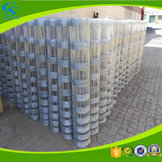 China Welded Wire Mesh Fence Used Fencing for Cattle Fence - China ...