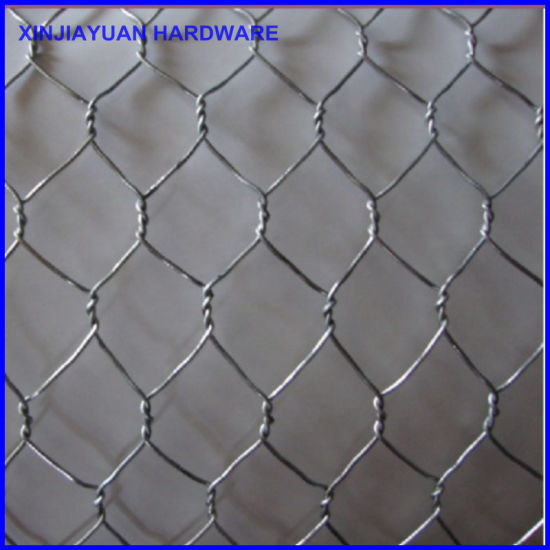 "Hexagon Wire Netting 3′x50′ with 1"" Opening pictures & photos"