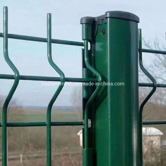 5.0mm Prepainted Galvanized Wire Mesh Fence Security Wire Mesh Fence Anping Factory