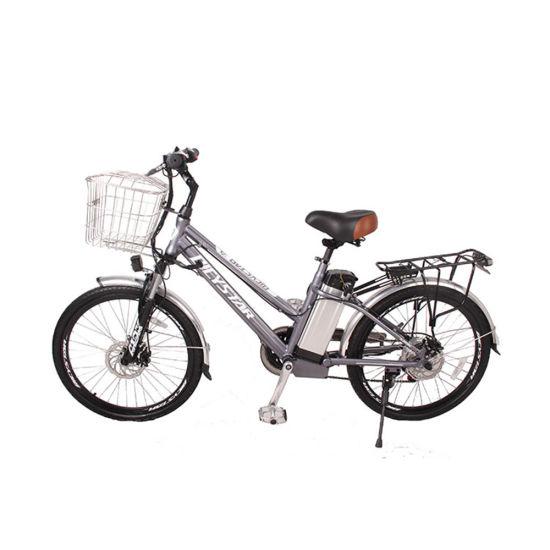 Electric Full Suspension MID Drive Bike Mountain Bike Hybrid Bikes Ladies Bicycle Lady Bike Load Bike