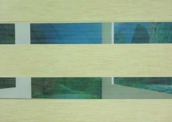 Soft and Comfortable Zebra Roller Blinds Fabric with Various Pattern Used in Coffee Bar pictures & photos
