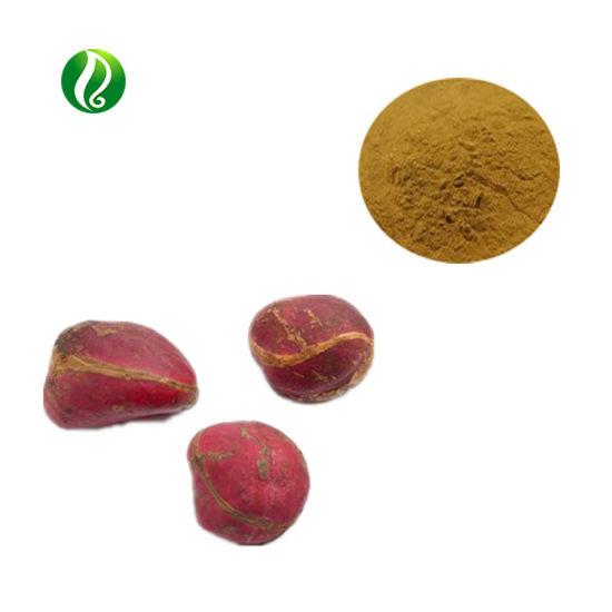China Top-Grade Bitter Kola Nut Theobromine Extract - China