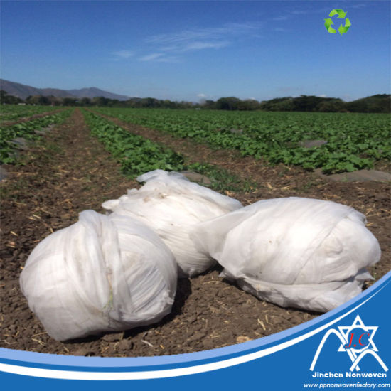 Agriculture Mulch Film pictures & photos