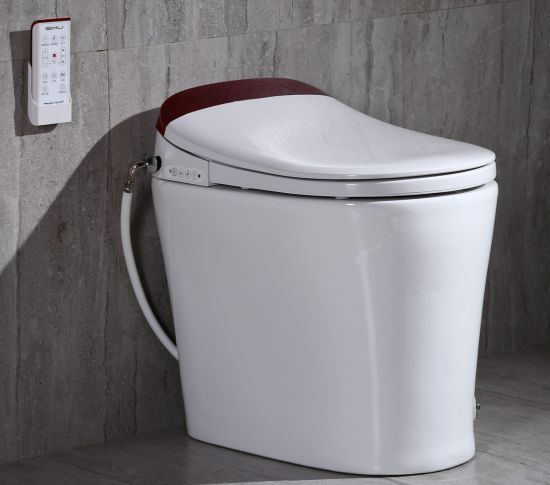 Toilet Intelligent with Water Proof