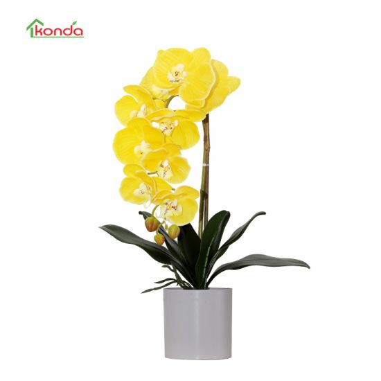 High Quality Real-Touch Artificial Orchid Flowers