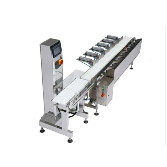 Hot Sale Bagged Jelly Weight Sorting Scales Weight Detector Auto Weight Checker for Food Industry