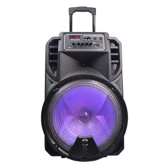 Temeisheng 15 Inch Pormotional Active Powerful Trolley Speaker
