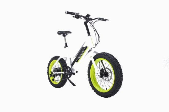 High Quality Ce Approved Lithium Power Electric Fat Tire Bike pictures & photos