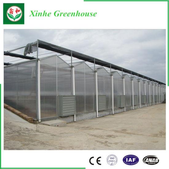 Good Price Garden Polycarbonate PC Hollow Sheet Greenhouse