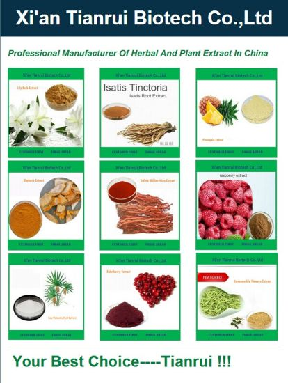 Chinese Herbal Extract Perillae Herb Extracts pictures & photos