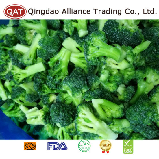 Top Quality Frozen IQF Cut Broccoli