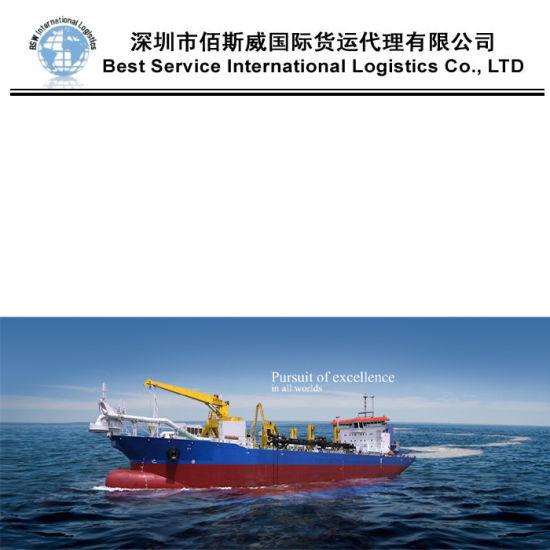 International Logistics Shipping From Qingdao to Brisbane, Sydney, Melbourn