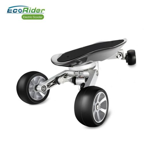 Ecorider Kick Scooter 4 Wheel Stand Up Electric Skateboard Pictures Photos