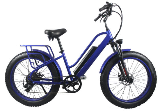 E Bicycle Sport Electric Mountain Bike Fat Tyre Mountain Ebike 26inch Mountain Bicycle