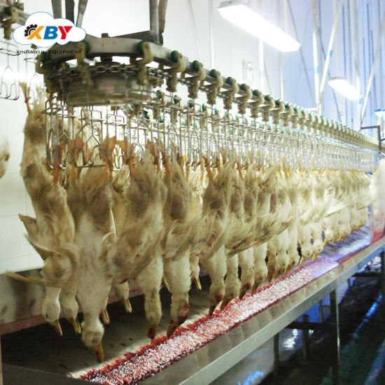 Fantastic China Customized Chicken Killing Machine For Poultry Download Free Architecture Designs Rallybritishbridgeorg
