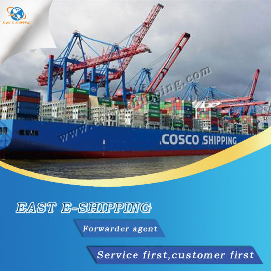 Sea/Air Logistics/Shipping Container From China to Indonesia