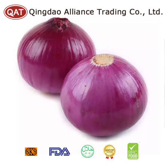 Purple Onion Peeled with Top Quality