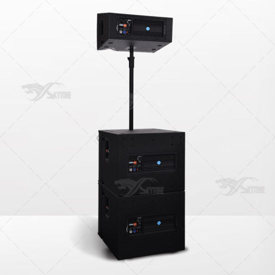 Skytone Vrx932lap 12 Inch Audio System Active Line Array pictures & photos