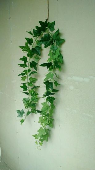 Artificial Plants and Flowers of Hanging Vine Gu-Mx-IVY003 pictures & photos