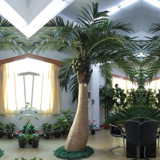 Home Decor 10f Artificial Coconut Tree Pictures Photos