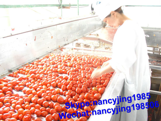 Hot Break Tomato Paste Double Concentrated 28-30% & 30-32%%
