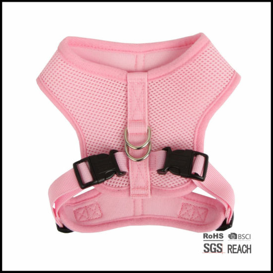 Designer Personalised Girl Cute Mesh Petdog Harness Freedom No Pull pictures & photos