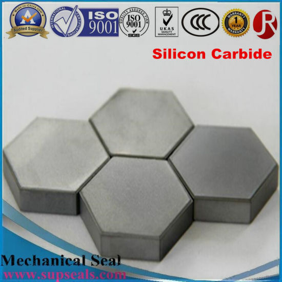 Silicon Carbide (SSIC) Seal Ring for Mechanical Seal pictures & photos