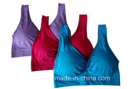 Genie Bra with Pad/Genie Bra / Spaort Bra/ Yoga Bra pictures & photos