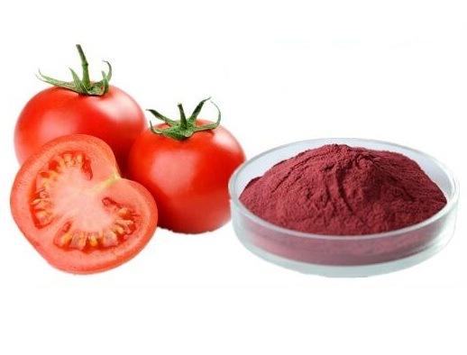 China El licopeno natural en polvo extracto de tomate el tomate P. E  extracto vegetal – Comprar El licopeno en polvo en es.made-in-china.com