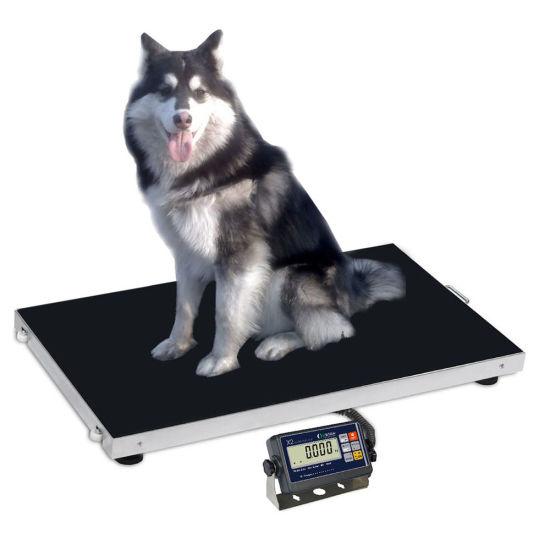 escala de animales escala veterinaria 300 kg Escala de plataforma para perro