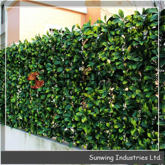 Chine Outdoor haies clôtures de jardin en plastique vert ...