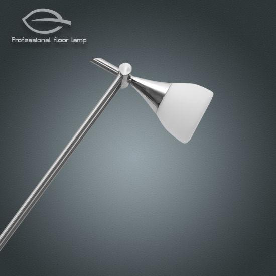 Chine Le haut et vers le bas du tube lampe LED ajustable