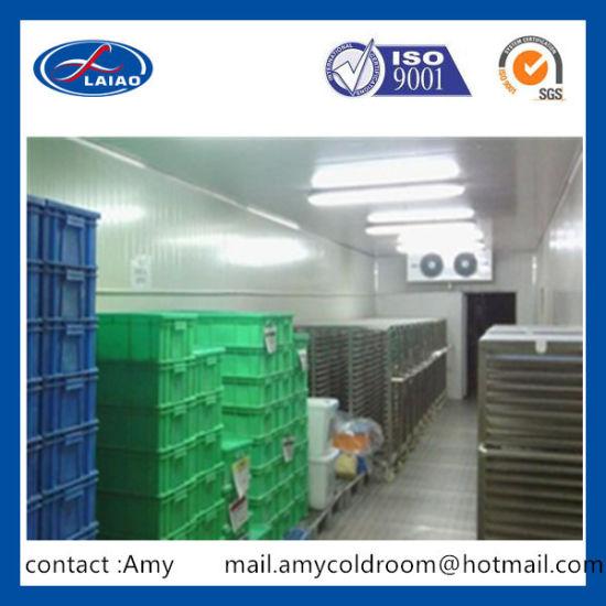 Chine Cuisine Congelateurs Congelateurs De Stockage Des Aliments