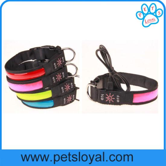 fabricant collier pour chien