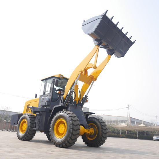 Cina 3.6 Ton caricatore agricolo con rastrello